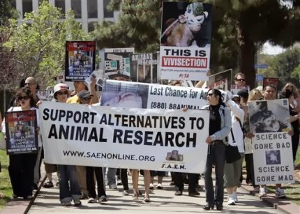 animal experimentation in the philippines Animal rights basics use these resources to learn the basic tenets of animal rights, answer frequently asked questions, and track major movement achievements.