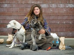 homelessness-and-dogs