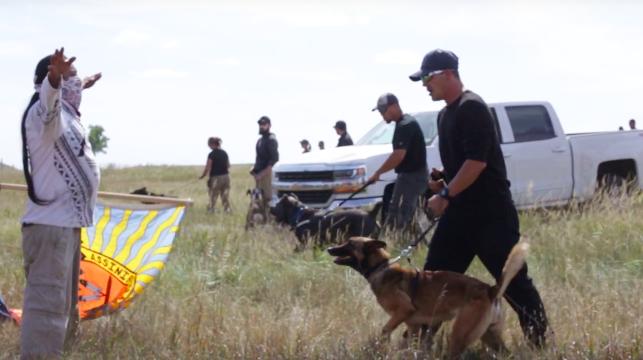 animal-rights-dakota-pipeline