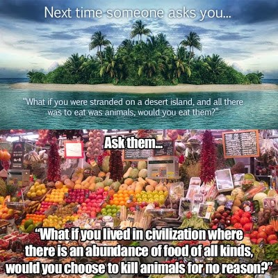 "Top half of meme pictures an island in the ocean and reads, ""Next time someone asks you...'What if you were stranded on a desert island, and all there was to eat was animals, would you eat them?""; Bottom half of meme pictures a bounty of fruits and vegetables in a market stall and reads, ""Ask them...'What if you lived in civilization where there is an abundance of food of all kinds, would you choose to kill animals for no reason?'"""