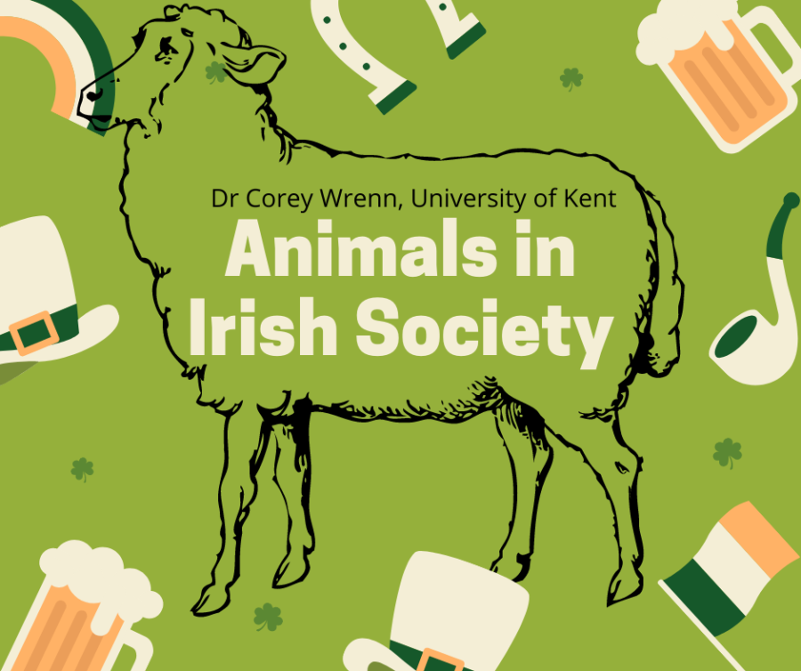 Animism in Ancient Ireland (Animals in Irish Society, Episode 1)